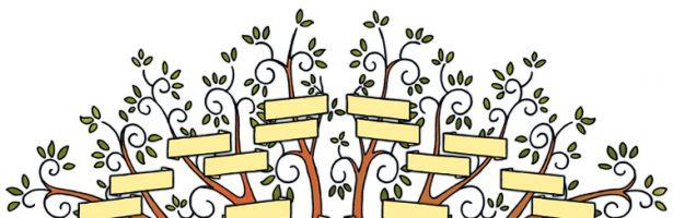 Oelegemse genealogie